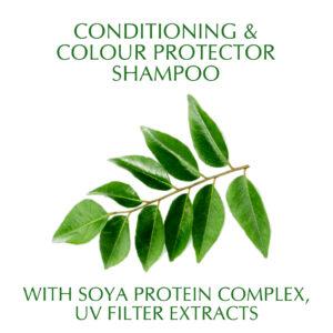 Synaa Henna cream Shampoo (1)