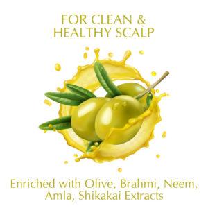 Synaa Olive Shampoo