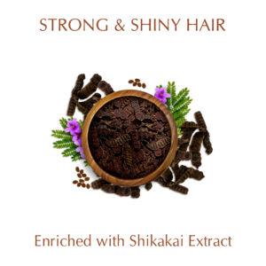 Synaa Shikakai Shampoo