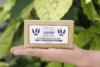 lavnder handmade soap